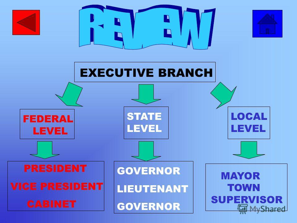 Mayor or Town Supervisor At the local level the head of the executive branch is either the Mayor or Town Supervisor.