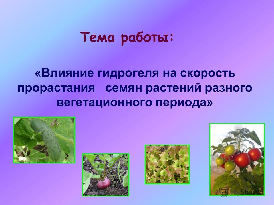 «Влияние гидрогеля на скорость прорастания семян растений разного вегетационного периода» Тема работы:
