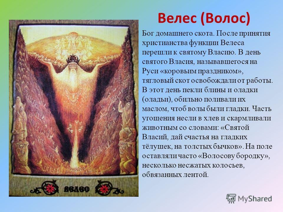 Велес (Волос) Бог домашнего скота. После принятия христианства функции Велеса перешли к святому Власию. В день святого Власия, называвшегося на Руси «коровьим праздником», тягловый скот освобождали от работы. В этот день пекли блины и оладки (оладьи)
