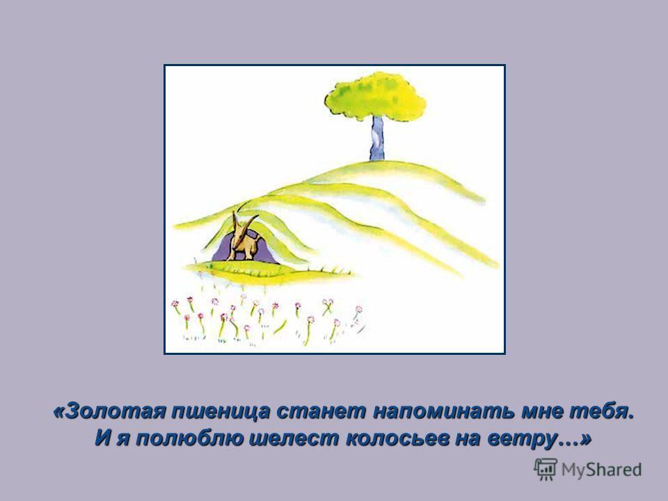 «Золотая пшеница станет напоминать мне тебя. И я полюблю шелест колосьев на ветру…»