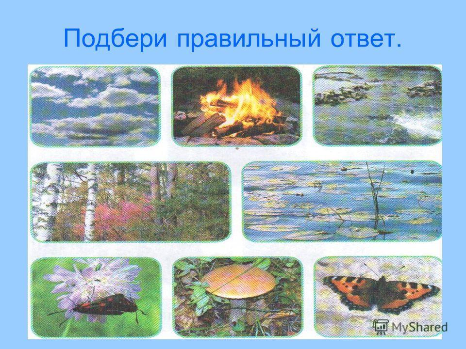 Выбери: На картинках изображены растения, животные, вода, камни, облака. Здесь изображены обьекты природы, но нет изделий человека. Объекты природы бывают живые и неживые.