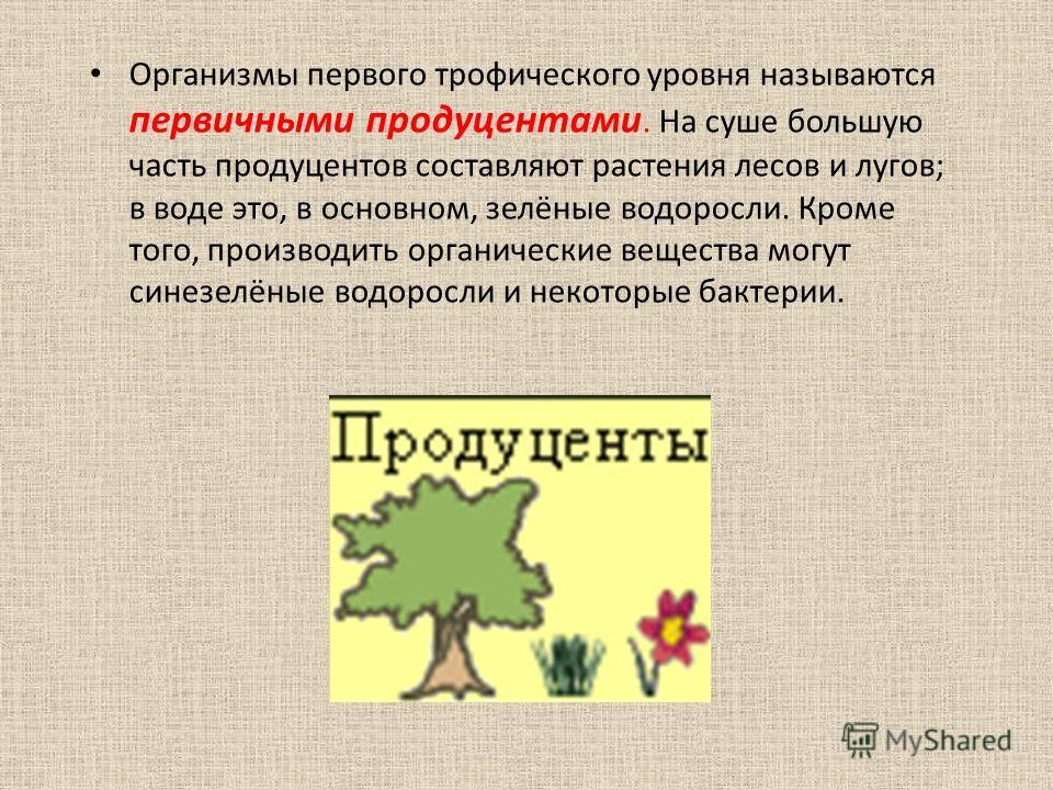 Организмы первого трофического уровня называются первичными продуцентами. На суше большую часть продуцентов составляют растения лесов и лугов; в воде это, в основном, зелёные водоросли. Кроме того, производить органические вещества могут синезелёные