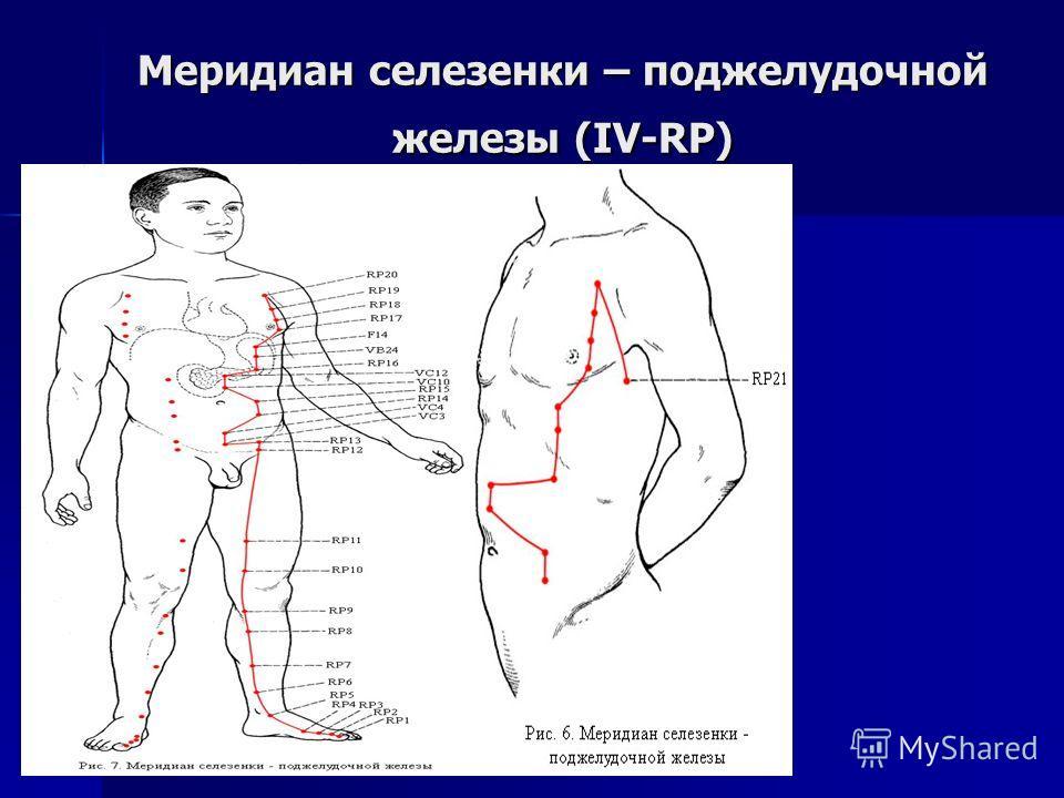 Меридиан селезенки – поджелудочной железы (IV-RP)
