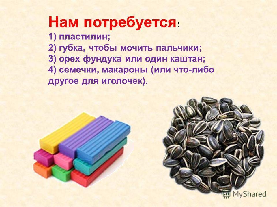 Нам потребуется : 1) пластилин; 2) губка, чтобы мочить пальчики; 3) орех фундука или один каштан; 4) семечки, макароны (или что-либо другое для иголочек).