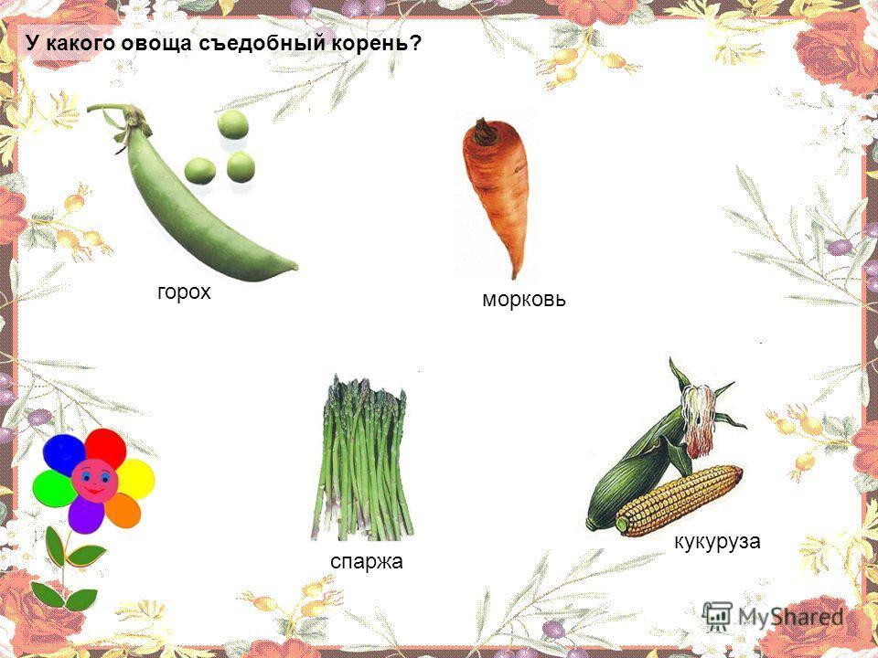 Какой фрукт не растёт на территории России? банан яблоко груша