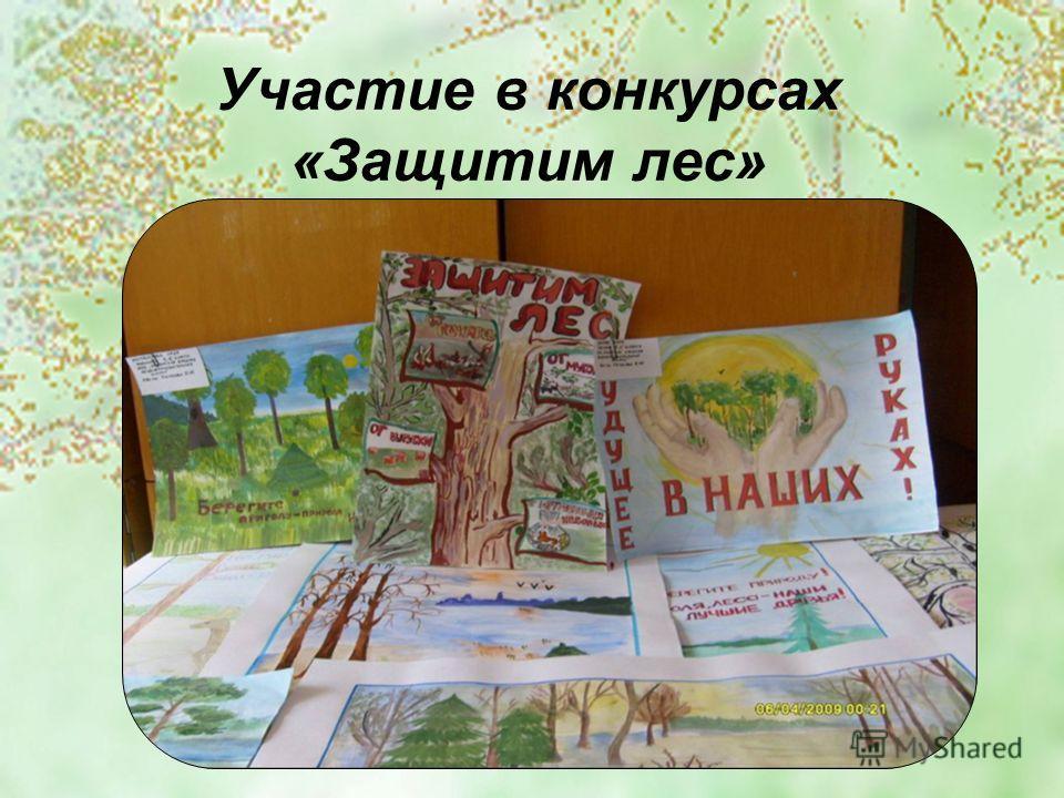 Участие в конкурсах «Защитим лес»