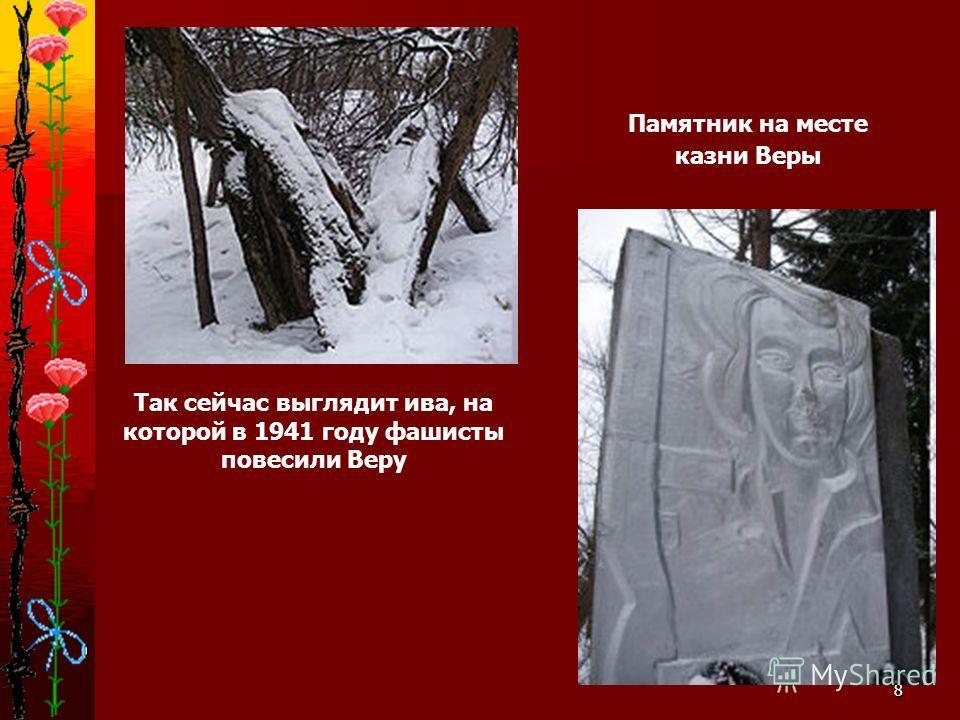 8 Так сейчас выглядит ива, на которой в 1941 году фашисты повесили Веру Памятник на месте казни Веры