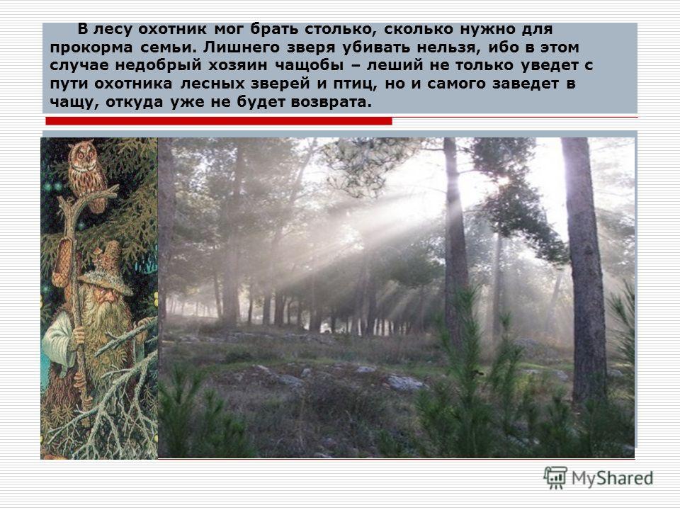 В лесу охотник мог брать столько, сколько нужно для прокорма семьи. Лишнего зверя убивать нельзя, ибо в этом случае недобрый хозяин чащобы – леший не только уведет с пути охотника лесных зверей и птиц, но и самого заведет в чащу, откуда уже не будет