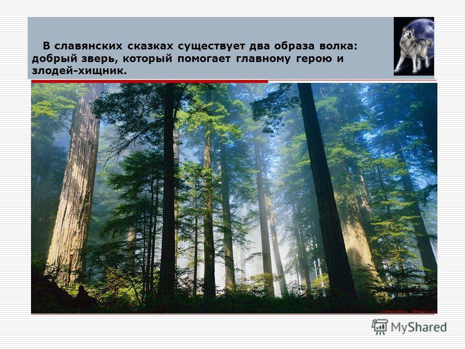 В славянских сказках существует два образа волка: добрый зверь, который помогает главному герою и злодей-хищник.