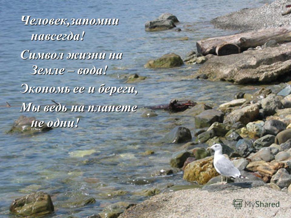 Человек,запомни навсегда! Символ жизни на Земле – вода! Экономь ее и береги, Мы ведь на планете не одни!