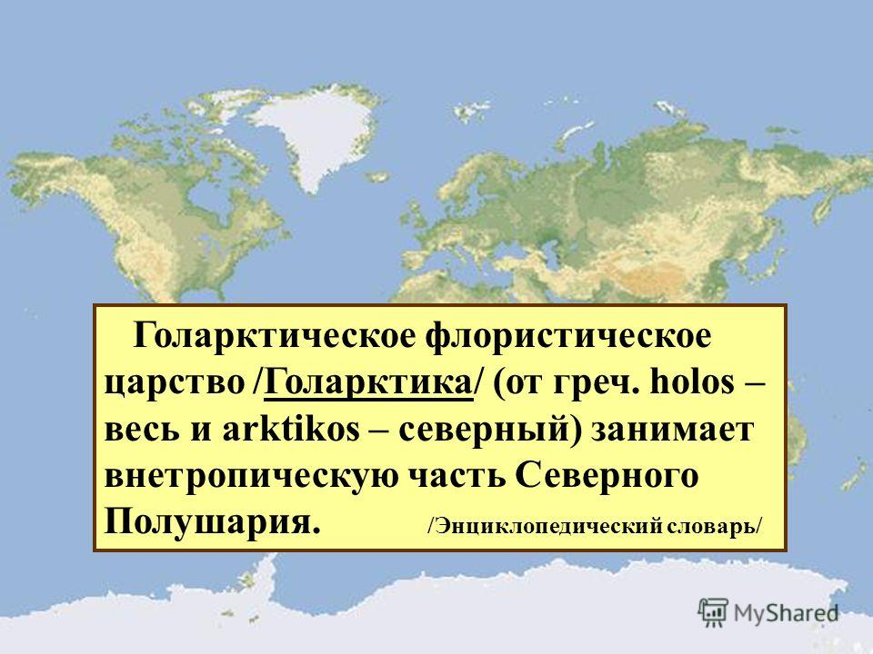 Голарктическое флористическое царство /Голарктика/ (от греч. holos – весь и arktikos – северный) занимает внетропическую часть Северного Полушария. /Энциклопедический словарь/
