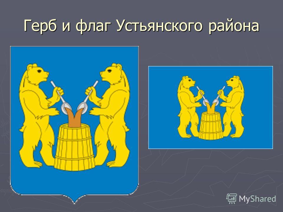 Герб и флаг Устьянского района