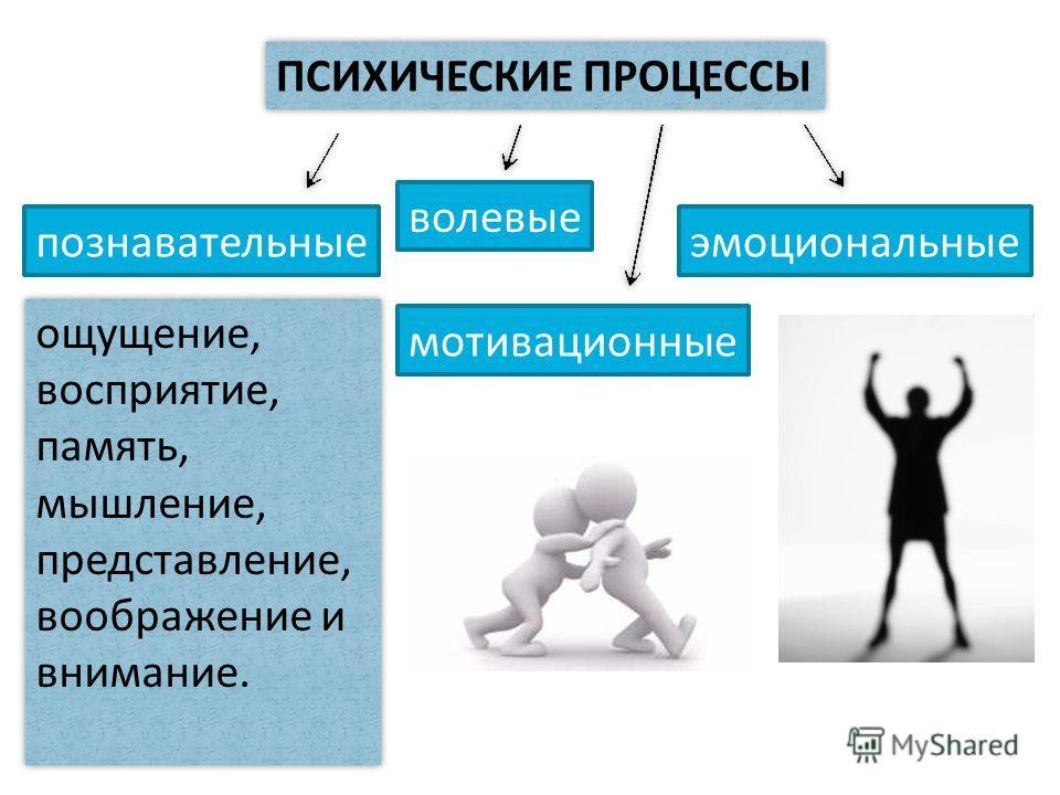 ПСИХИЧЕСКИЕ ПРОЦЕССЫ познавательные волевые эмоциональные ощущение, восприятие, память, мышление, представление, воображение и внимание. мотивационные
