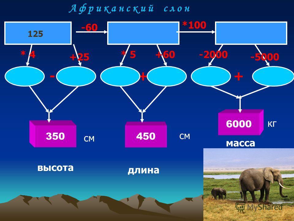 350 6000 450 125 -60 *100 * 4 +25 * 5+60-2000 -5000 -++ высота длина масса см кг А ф р и к а н с к и й с л о н