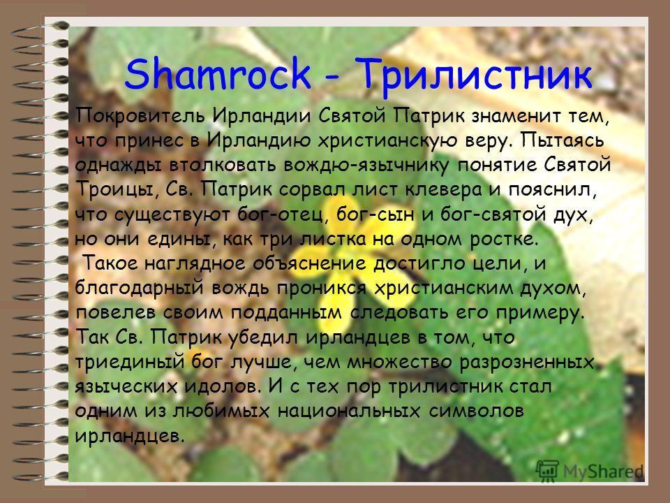 Shamrock - Трилистник Покровитель Ирландии Святой Патрик знаменит тем, что принес в Ирландию христианскую веру. Пытаясь однажды втолковать вождю-язычнику понятие Святой Троицы, Св. Патрик сорвал лист клевера и пояснил, что существуют бог-отец, бог-сы