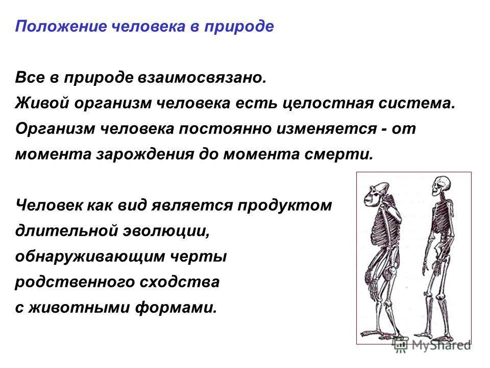 Положение человека в природе Все в природе взаимосвязано. Живой организм человека есть целостная система. Организм человека постоянно изменяется - от момента зарождения до момента смерти. Человек как вид является продуктом длительной эволюции, обнару