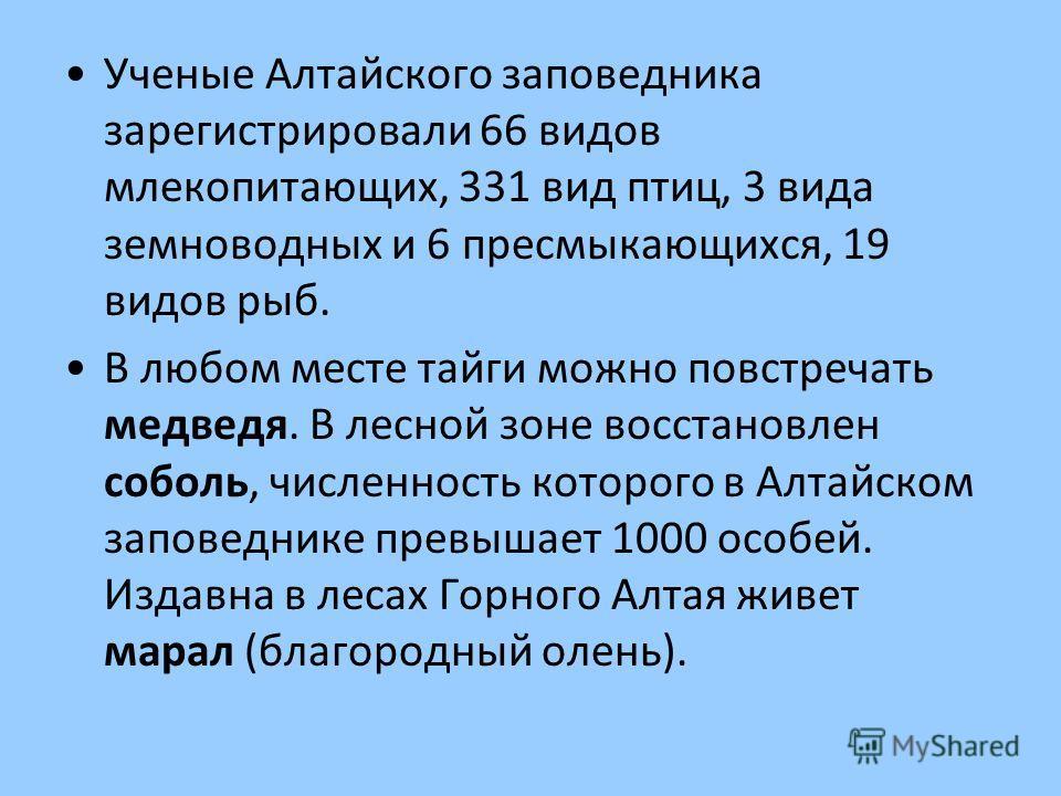 Ученые Алтайского заповедника зарегистрировали 66 видов млекопитающих, 331 вид птиц, 3 вида земноводных и 6 пресмыкающихся, 19 видов рыб. В любом месте тайги можно повстречать медведя. В лесной зоне восстановлен соболь, численность которого в Алтайск