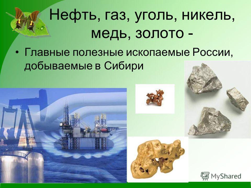 Нефть, газ, уголь, никель, медь, золото - Главные полезные ископаемые России, добываемые в Сибири