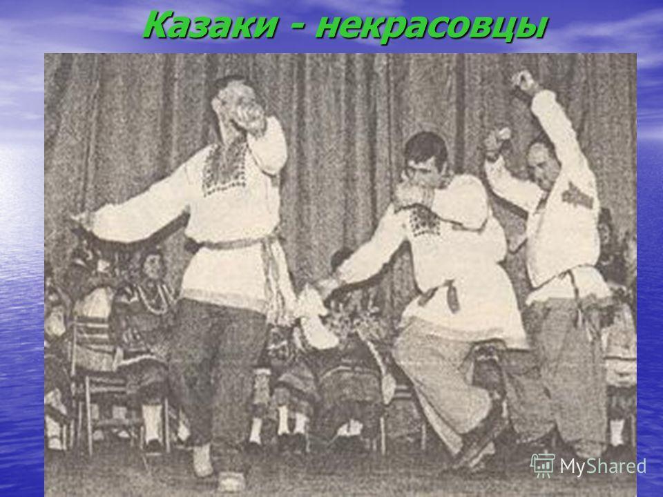 Казаки - некрасовцы Казаки - некрасовцы