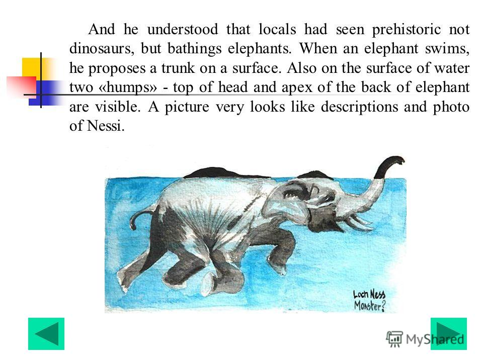 And he understood that locals had seen prehistoric not dinosaurs, but bathings elephants. When an elephant swims, he proposes a trunk on a surface. Also on the surface of water two «humps» - top of head and apex of the back of elephant are visible. A