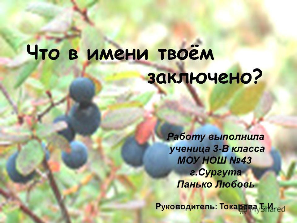 Цель исследования: Работу выполнила ученица 3-В класса МОУ НОШ 43 г.Сургута Панько Любовь Руководитель: Токарева Т. И. Что в имени твоём заключено?