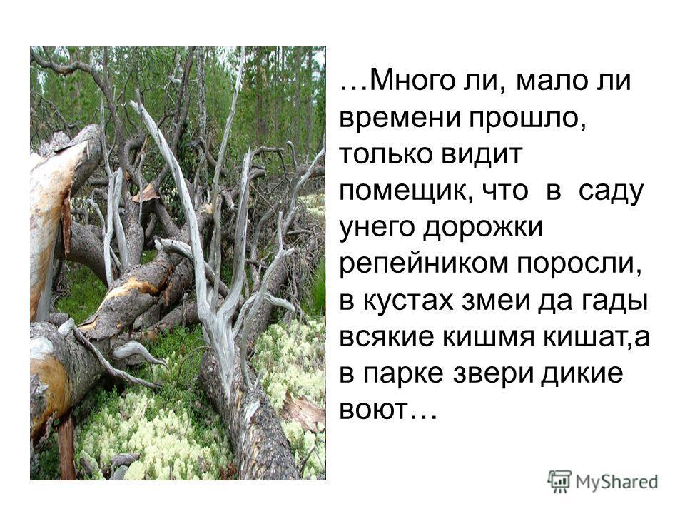 …Много ли, мало ли времени прошло, только видит помещик, что в саду унего дорожки репейником поросли, в кустах змеи да гады всякие кишмя кишат,а в парке звери дикие воют…