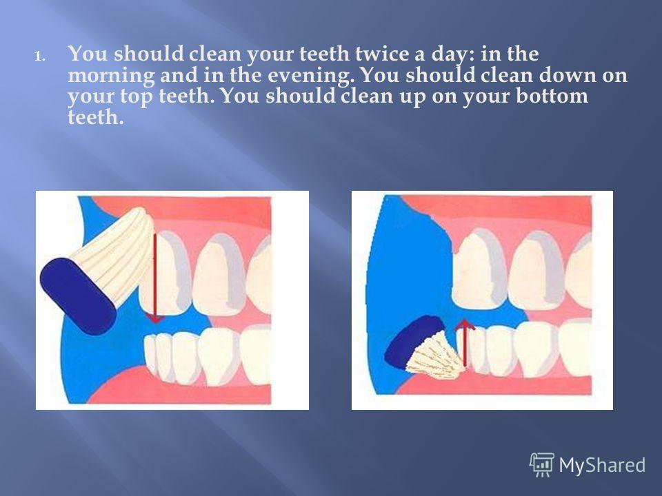 1. You should clean your teeth twice a day: in the morning and in the evening. You should clean down on your top teeth. You should clean up on your bottom teeth.