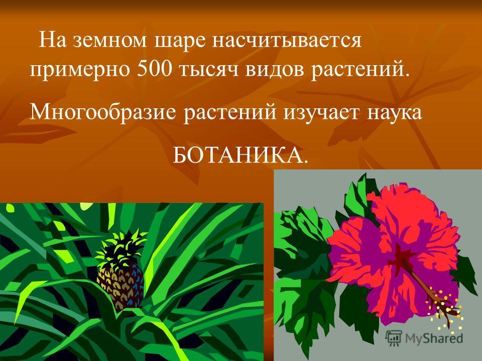 На земном шаре насчитывается примерно 500 тысяч видов растений. Многообразие растений изучает наука БОТАНИКА.