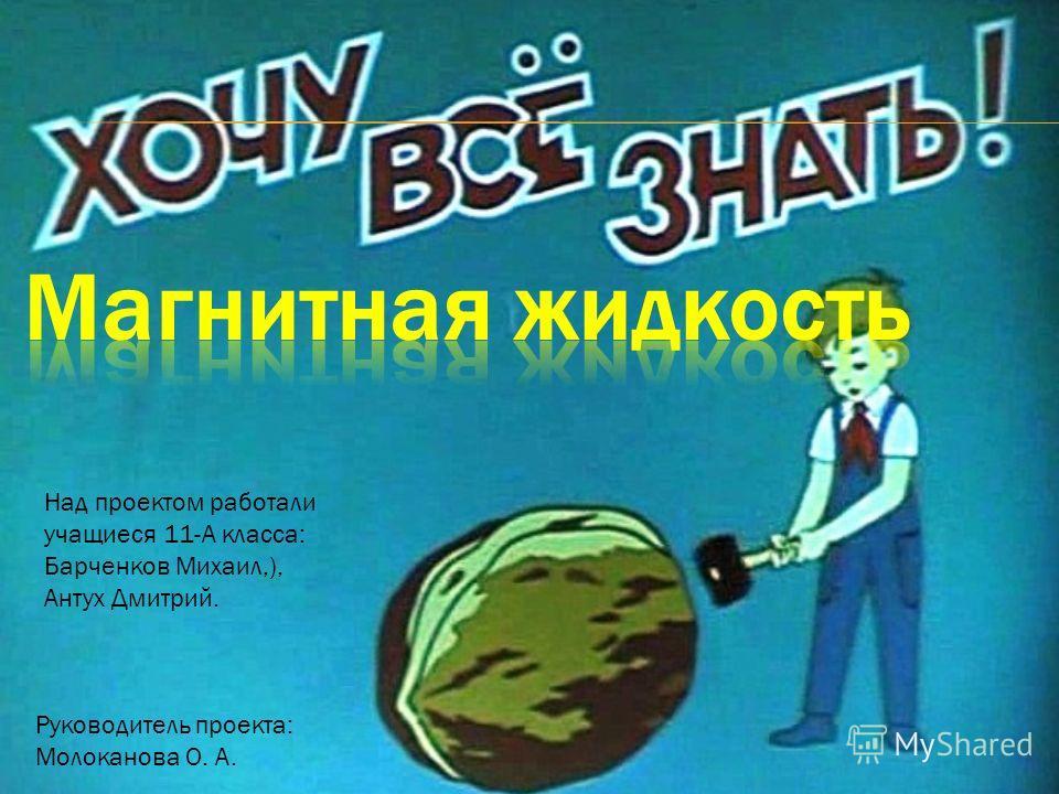 Над проектом работали учащиеся 11-А класса: Барченков Михаил,), Антух Дмитрий. Руководитель проекта: Молоканова О. А.