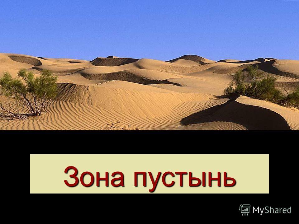 Презентация на тему Зона пустынь В России полупустыни и пустыни  1 Зона пустынь