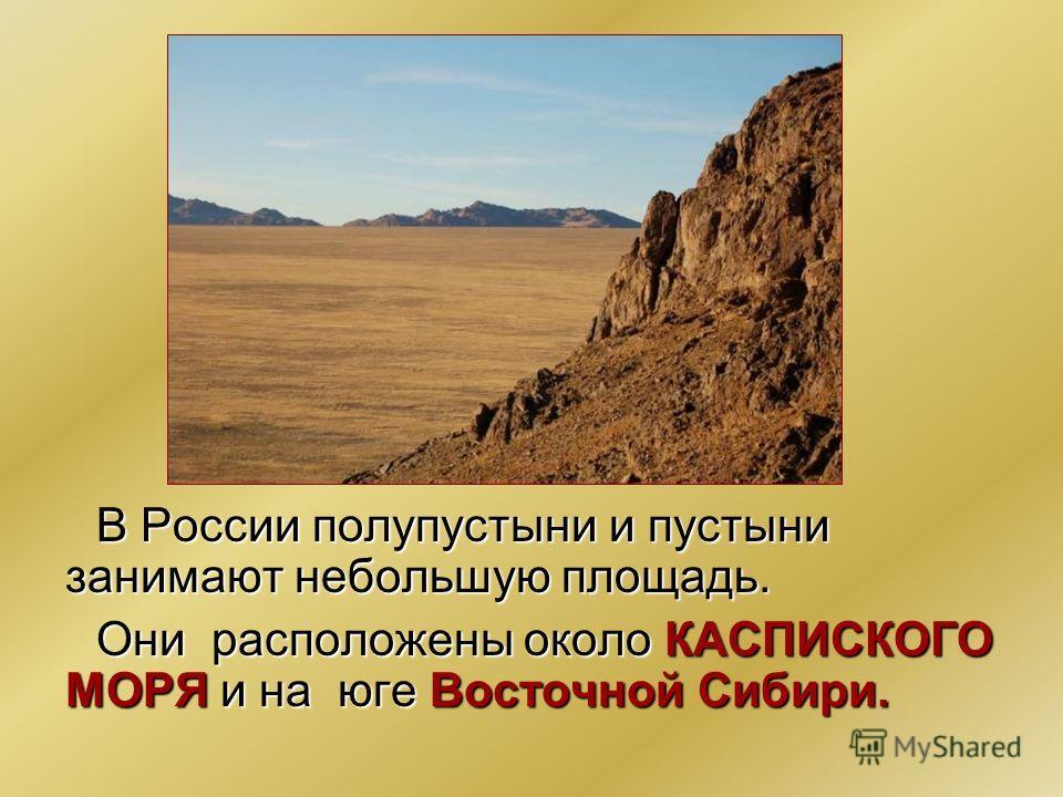 В России полупустыни и пустыни занимают небольшую площадь. Они расположены около КАСПИСКОГО МОРЯ и на юге Восточной Сибири.
