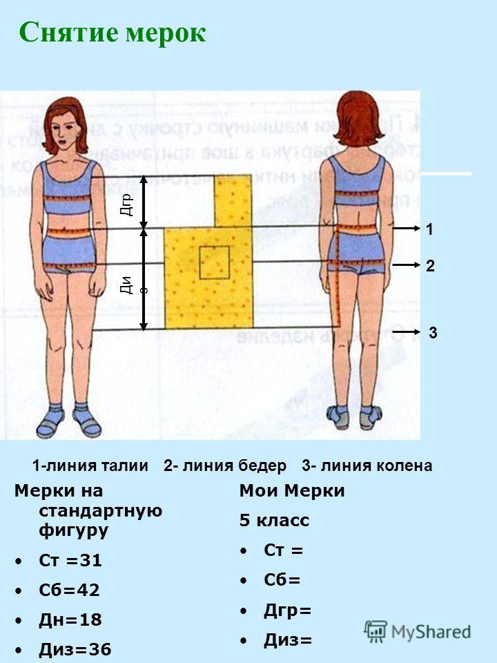 Снятие мерок Ди з Дгр Мерки на стандартную фигуру Ст =31 Сб=42 Дн=18 Диз=36 Мои Мерки 5 класс Ст = Сб= Дгр= Диз= 1 2 3 1-линия талии 2- линия бедер 3- линия колена