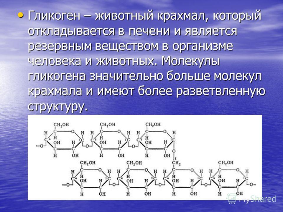 Гликоген – животный крахмал, который откладывается в печени и является резервным веществом в организме человека и животных. Молекулы гликогена значительно больше молекул крахмала и имеют более разветвленную структуру. Гликоген – животный крахмал, кот