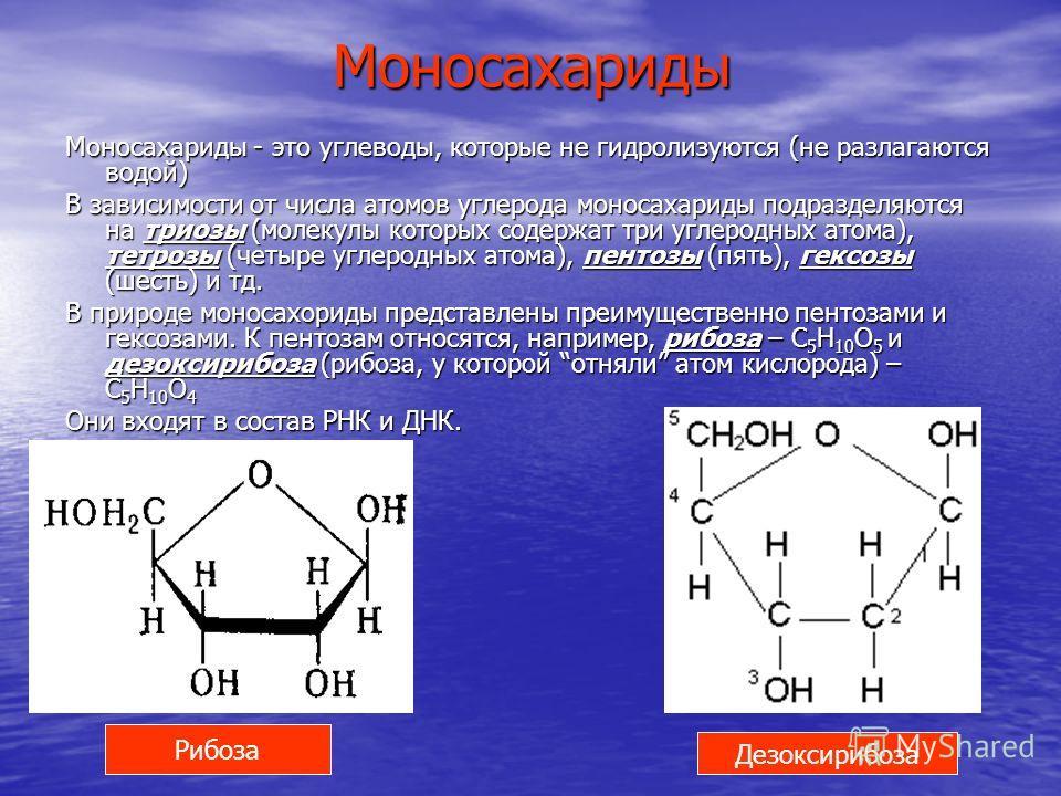 Моносахариды Моносахариды - это углеводы, которые не гидролизуются (не разлагаются водой) В зависимости от числа атомов углерода моносахариды подразделяются на триозы (молекулы которых содержат три углеродных атома), тетрозы (четыре углеродных атома)