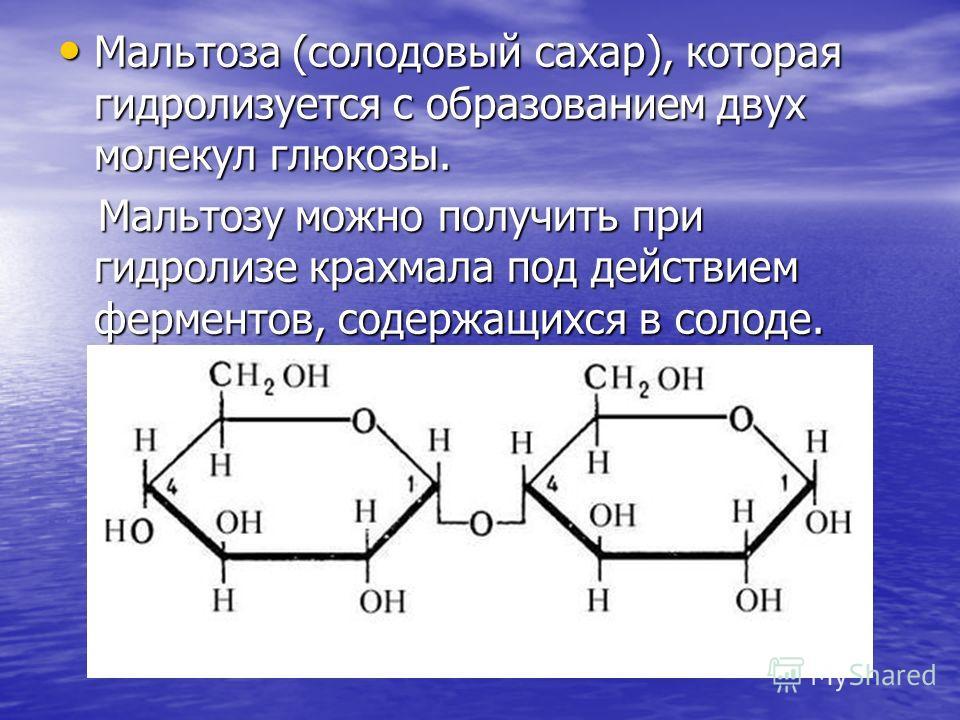 Мальтоза (солодовый сахар), которая гидролизуется с образованием двух молекул глюкозы. Мальтоза (солодовый сахар), которая гидролизуется с образованием двух молекул глюкозы. Мальтозу можно получить при гидролизе крахмала под действием ферментов, соде