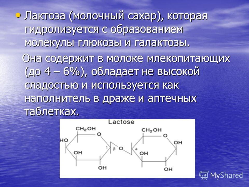 Лактоза (молочный сахар), которая гидролизуется с образованием молекулы глюкозы и галактозы. Лактоза (молочный сахар), которая гидролизуется с образованием молекулы глюкозы и галактозы. Она содержит в молоке млекопитающих (до 4 – 6%), обладает не выс