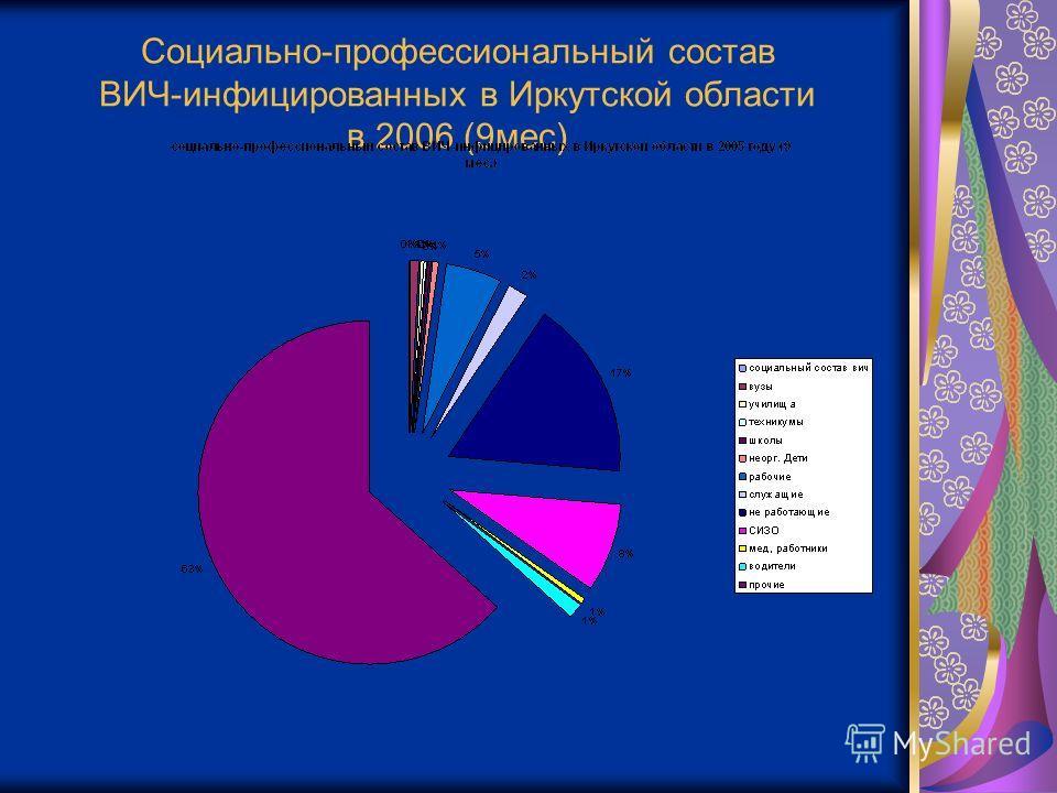 Социально-профессиональный состав ВИЧ-инфицированных в Иркутской области в 2006 (9мес)