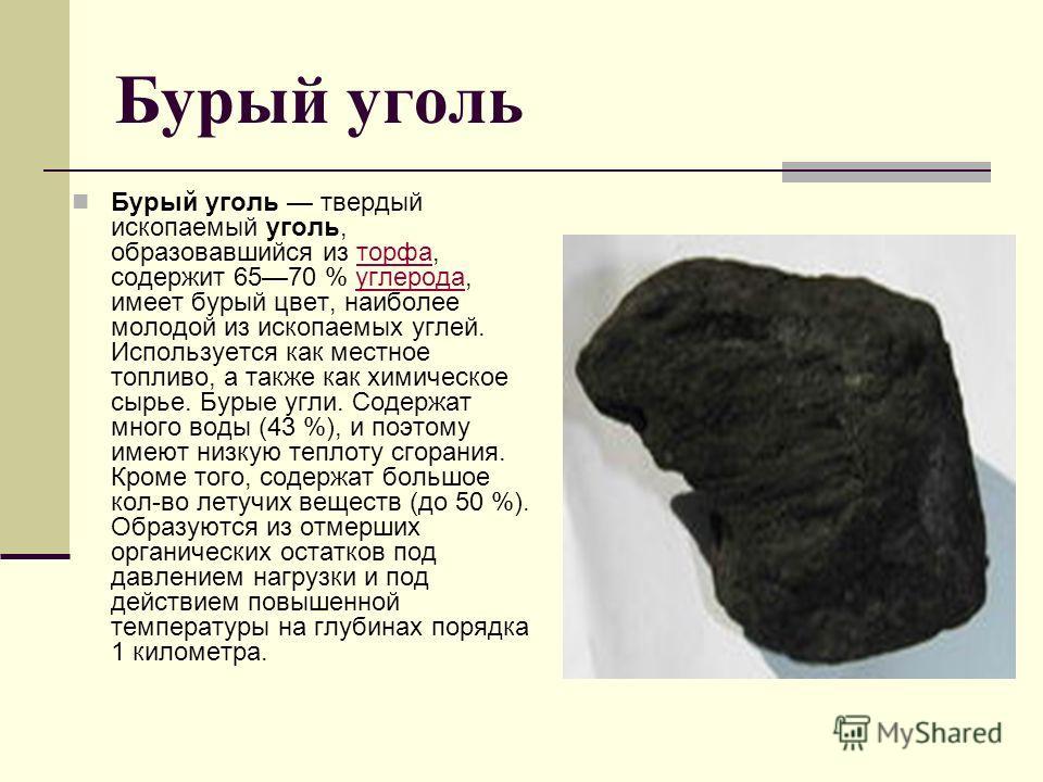 Каменный уголь Каменный уголь осадочная порода, представляющая собой продукт глубокого разложения остатков растений (древовидных папоротников, хвощей и плаунов, а также первых голосеменных растений). Большинство залежей каменного угля было образовано
