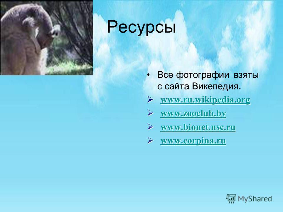 Ресурсы Все фотографии взяты с сайта Викепедия. www.ru.wikipedia.org www.ru.wikipedia.org www.ru.wikipedia.org www.zooclub.by www.zooclub.by www.zooclub.by www.zooclub.by www.bionet.nsc.ru www.bionet.nsc.ru www.bionet.nsc.ru www.corpina.ru www.corpin