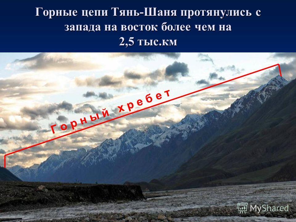 Горные цепи Тянь-Шаня протянулись с запада на восток более чем на 2,5 тыс.км Г о р н ы й х р е б е т