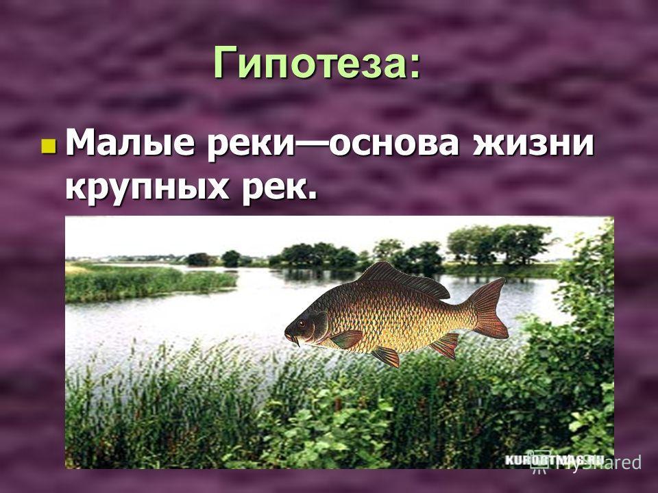 Гипотеза: Гипотеза: Малые рекиоснова жизни крупных рек. Малые рекиоснова жизни крупных рек.