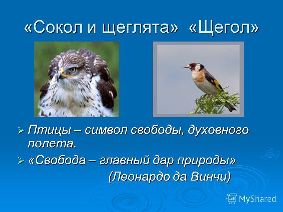 «Сокол и щеглята» «Щегол» Птицы – символ свободы, духовного полета. Птицы – символ свободы, духовного полета. «Свобода – главный дар природы» «Свобода – главный дар природы» (Леонардо да Винчи) (Леонардо да Винчи)