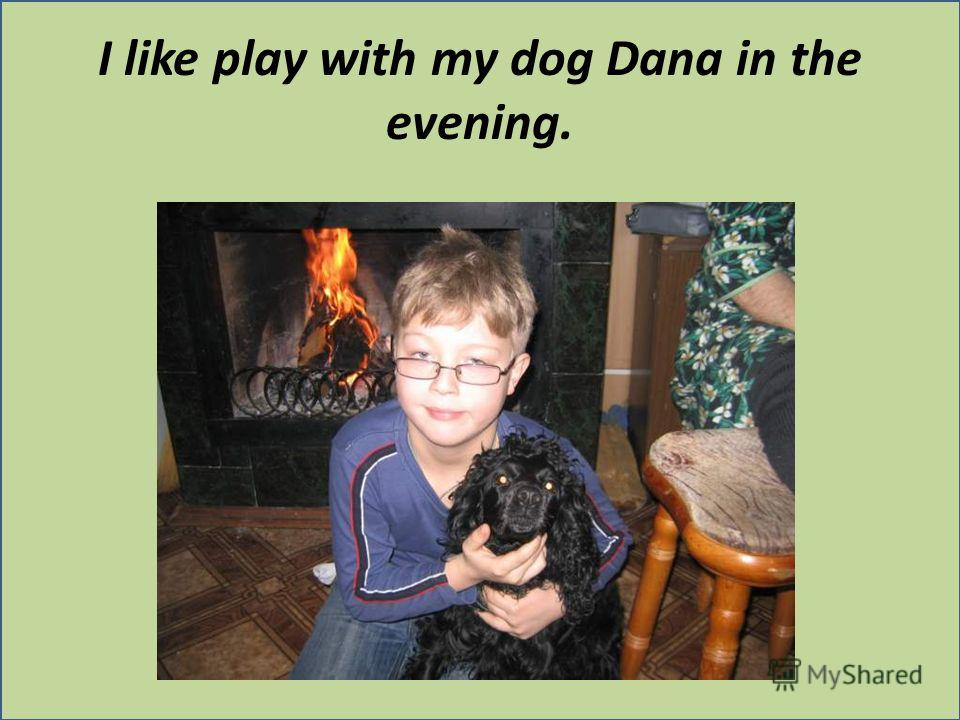 I like play with my dog Dana in the evening.