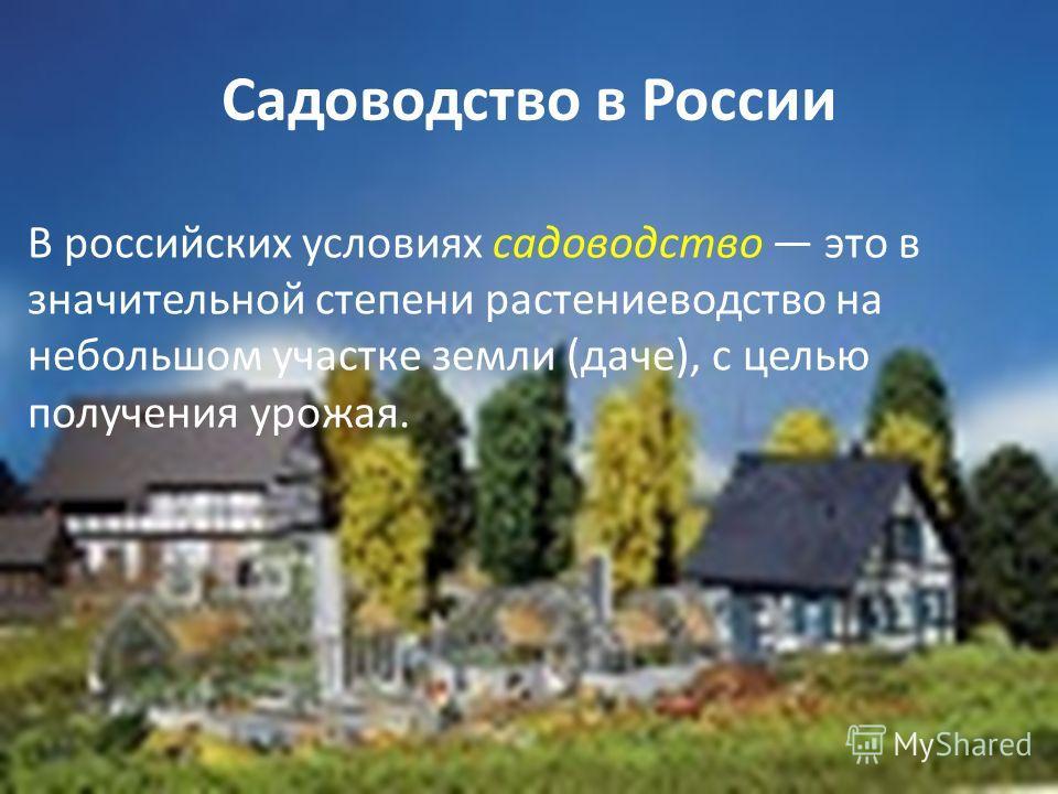 Садоводство в России В российских условиях садоводство это в значительной степени растениеводство на небольшом участке земли (даче), с целью получения урожая.