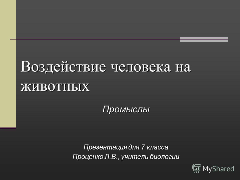 Воздействие человека на животных Промыслы Презентация для 7 класса Проценко Л.В., учитель биологии