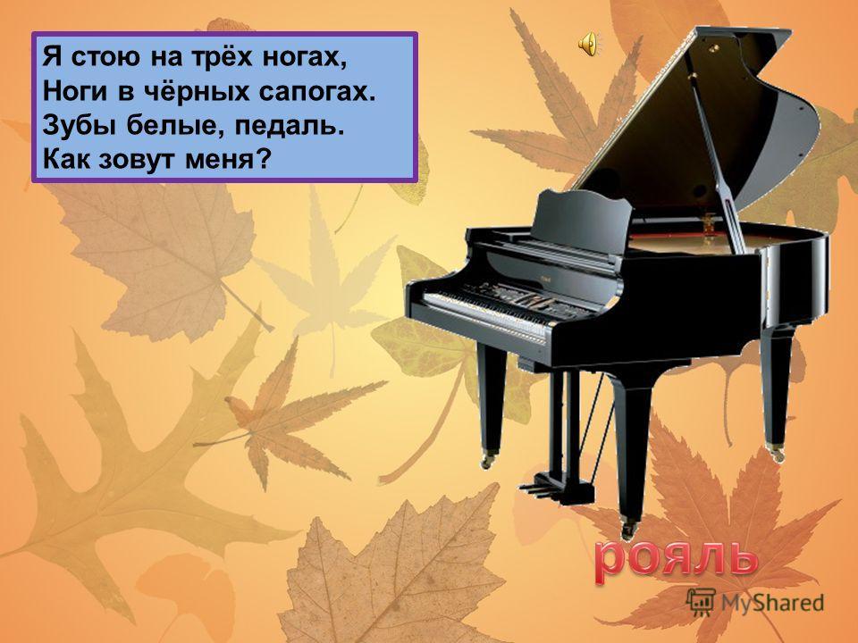 От гармони он родился, С пианино подружился. Он и на баян похож. Как его ты назовёшь?