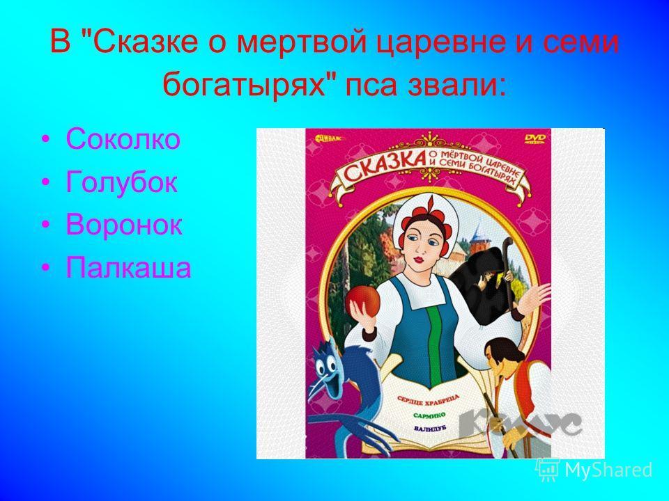 В Сказке о мертвой царевне и семи богатырях пса звали: Соколко Голубок Воронок Палкаша