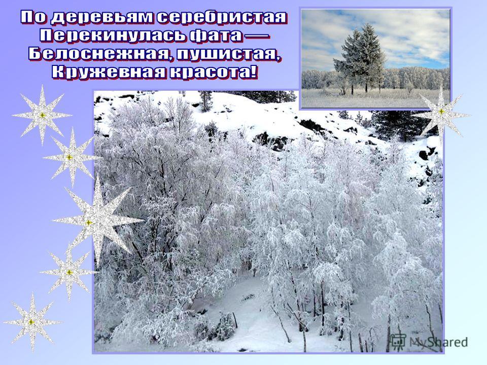 Елка ветви свои опустила, Белый иней осыпал ее... Белая берёза Под моим окном Принакрылась снегом, Точно серебром. На пушистых ветках Снежною каймой Распустились кисти Белой бахромой.