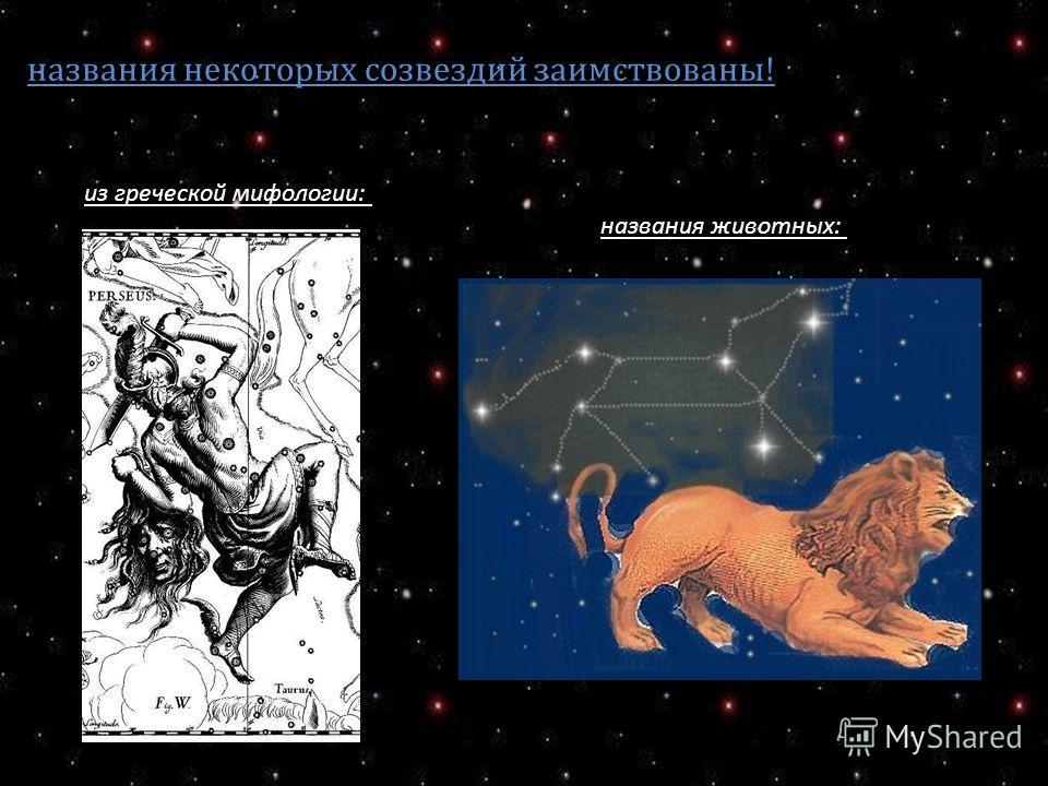 названия некоторых созвездий заимствованы! из греческой мифологии: названия животных: