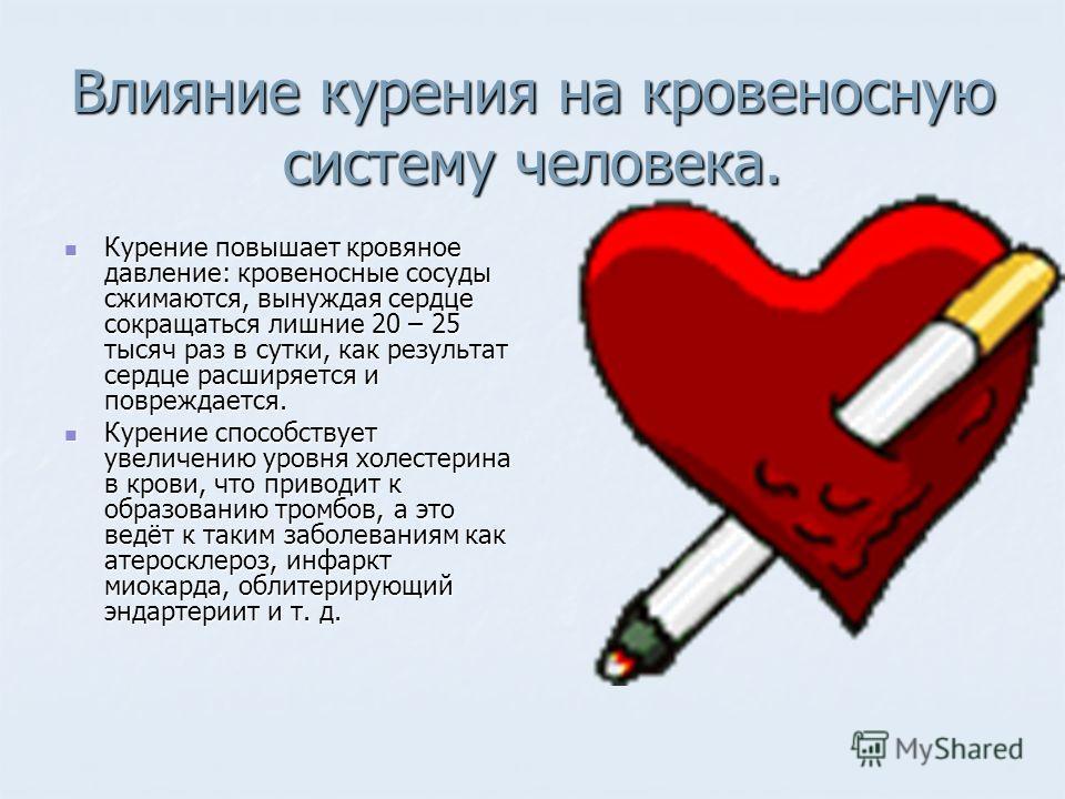 Влияние курения на кровеносную систему человека. Курение повышает кровяное давление: кровеносные сосуды сжимаются, вынуждая сердце сокращаться лишние 20 – 25 тысяч раз в сутки, как результат сердце расширяется и повреждается. Курение повышает кровяно
